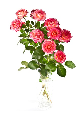 roses in vase: Beautiful bouquet of colored roses in a vase on a white background, isolated