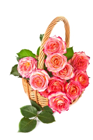 Bouquet of beautiful color of roses in a basket on a white background  photo
