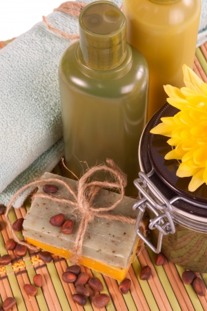 siberian pine: Set of Spa procedures with natural soap and scrub on the basis of the nuts of the Siberian pine.