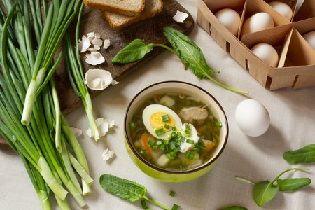 Green sorrel soup with egg and sour cream. Spring and Summer menu. Top view Standard-Bild - 123431237