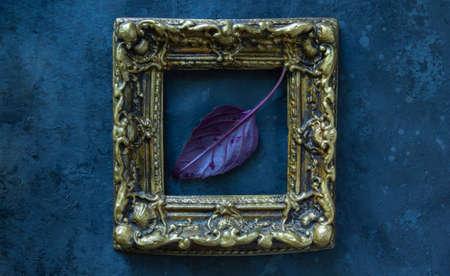 Fresh red basil herb leaf in frame on black background. Purple Dark Opal Basil Archivio Fotografico