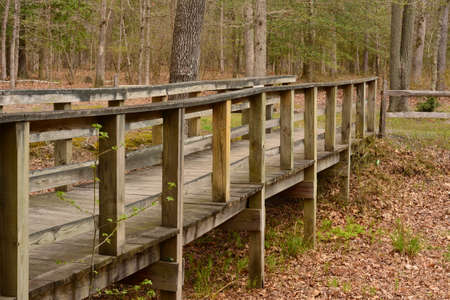 Wooden Bridge over dry stream