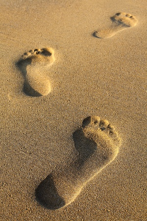 footsteps in sandy on the beach  photo