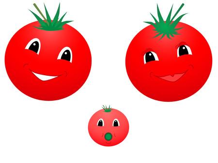 Vector illustration of happy tomato Stock Vector - 2375585