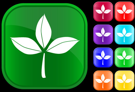 Icon of leaves on shiny square buttons Stock Vector - 2994071