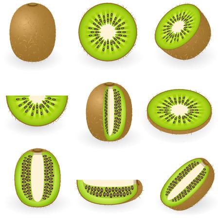 Vectorillustratie van kiwi fruit Stock Illustratie