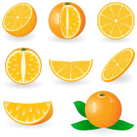Vector illustration of orange fruit