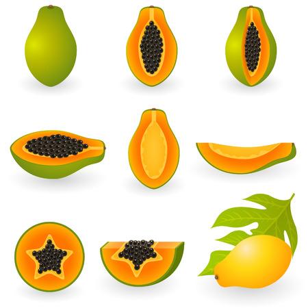 Vector afbeelding van papaja Stock Illustratie