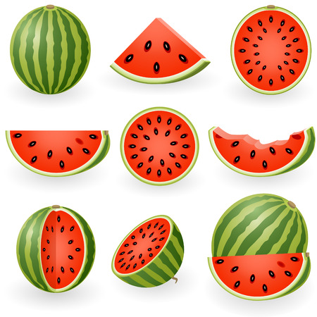 Vector illustration of watermelon Фото со стока - 6180680
