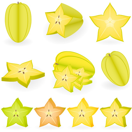 Vector illustration of starfruit