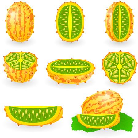 afbeelding van kiwano, ook wel bekend als de Afrikaanse melon of komkommer, hedged gourd, Engelse tomaten, melano horned Stock Illustratie