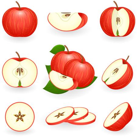 manzana: Ilustración vectorial de manzana roja Vectores
