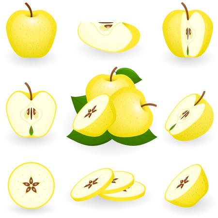 Vector illustration of golden apple