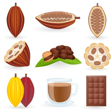 cocoa fruit: Icon Set Cocoa