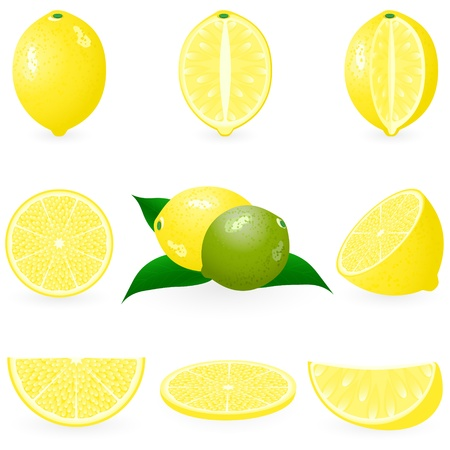 Icon Set Lemon Vector