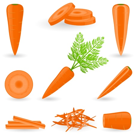 shredding: Icon Set Carrot