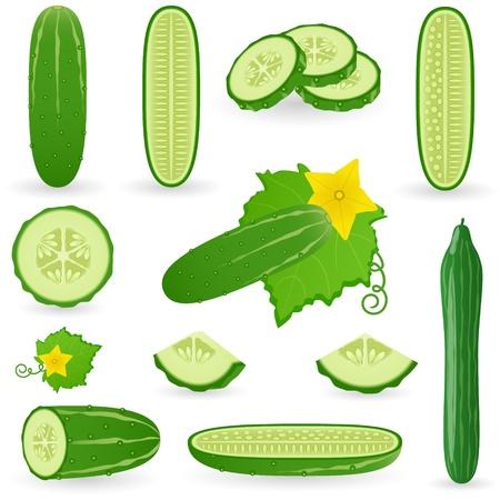 Icon Set Cucumber Illustration