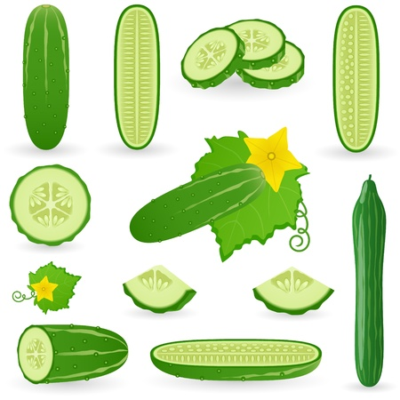 Icon Set Cucumber Stock Vector - 21448844