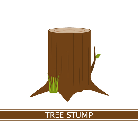 tree grass: Tree stump vector icon with green grass and leaf in flat style. Isolated on white background. Annual growth rings.