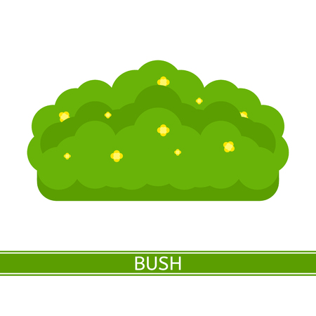 A Vector illustration of bush with yellow flowers, isolated on white background, in flat style