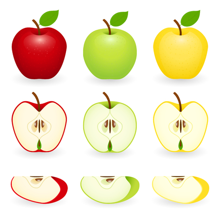 Set of apples in red, green and golden with slices. Vector illustration isolated on white background.
