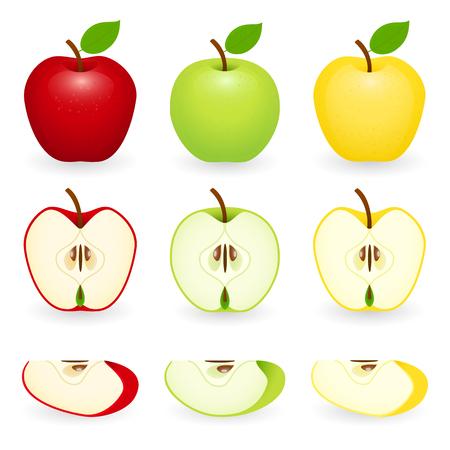 Ensemble de pommes en rouge, vert et doré avec des tranches. Illustration vectorielle isolée sur fond blanc.