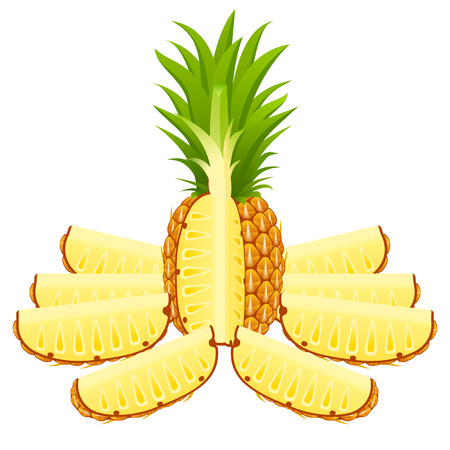 Vector illustration of cut pineapple and slices isolated on white background. Vectores
