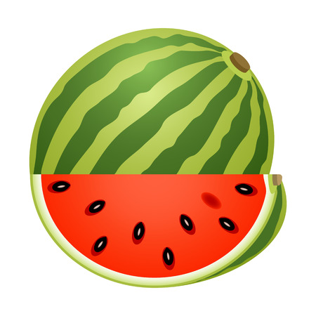 Vector illustration of whole watermelon with slice isolated on white background.