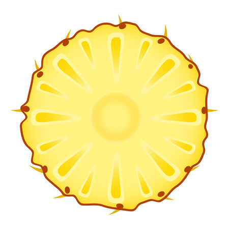 Vector illustration of pineapple ring isolated on white background. Sliced tropical fruit.