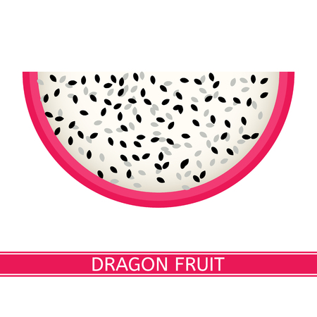 Vector illustration of dragon fruit also known as pitaya, strawberry pear or cactus fruit. Pitahaya slice isolated on white background Illustration
