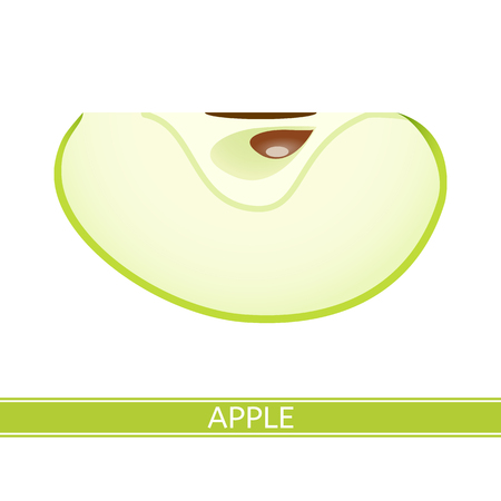Green sliced apple isolated on white background. Vector illustration.