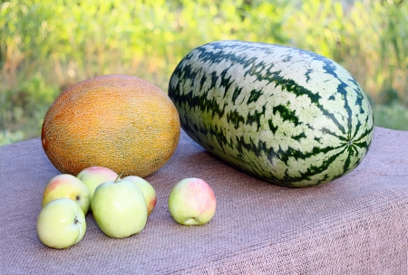 watermelon and melon on the table in the garden