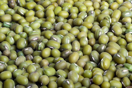 Heap of organic raw green mung bean lentils grouped together to form a background