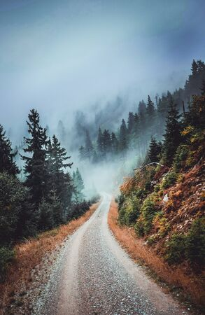 Misty Mountains road