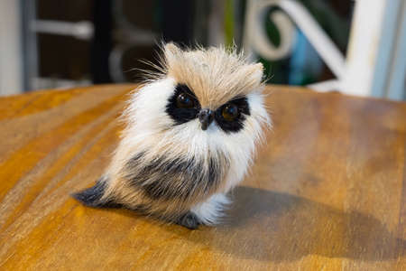 Owl doll Stock Photo