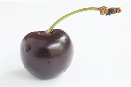 appetizing: Verse smakelijke bes