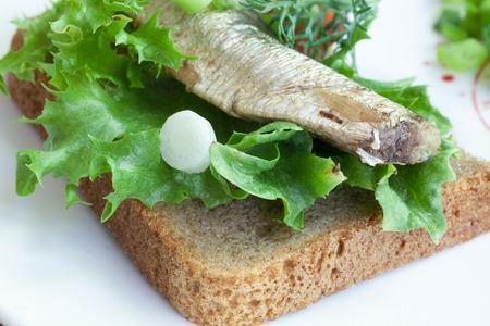 vegetable tin: sprats on the bread closeup