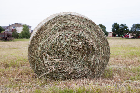 haystack: haystack on the field Stock Photo