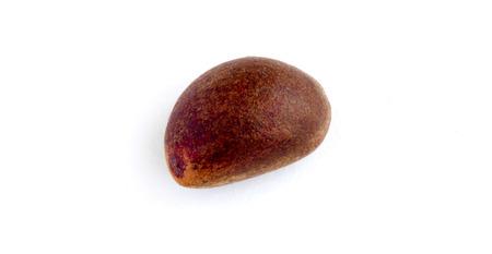 pinoli: Pinoli in guscio.