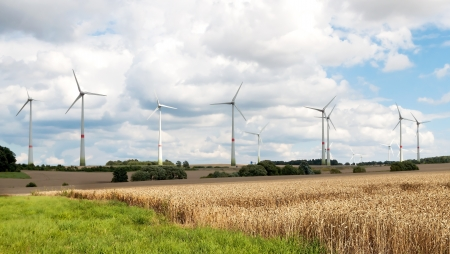 Field with installed wind generators