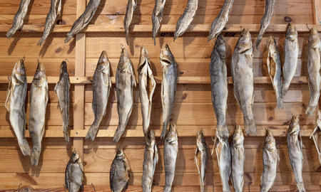 desiccated: Dried fish hung on the grid Stock Photo