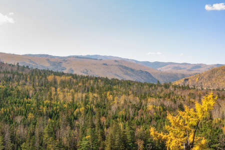 far eastern: Far Eastern taiga. Autumn hills and mountains in autumn colors.