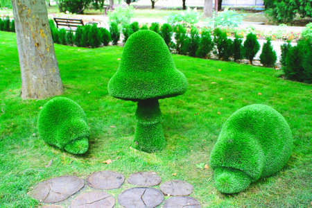 Sculptures of a hedgehog and a mushroom made of green artificial fur in the Park.