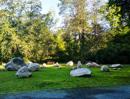 Rock garden with trees and blue sky.