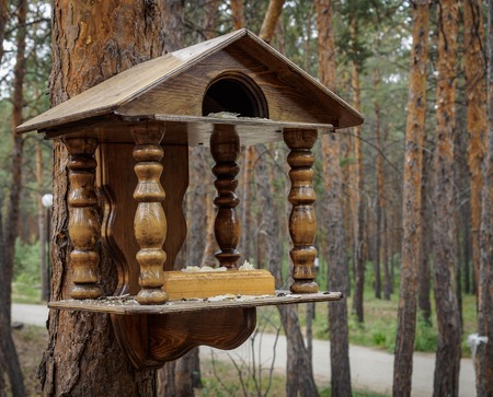 makeshift houses for the birds in the Park
