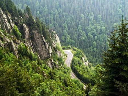 firry: forest on cloudy mountains in a summer day Stock Photo