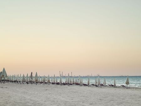 rows of lounge chairs and umbrellas on the beach photo