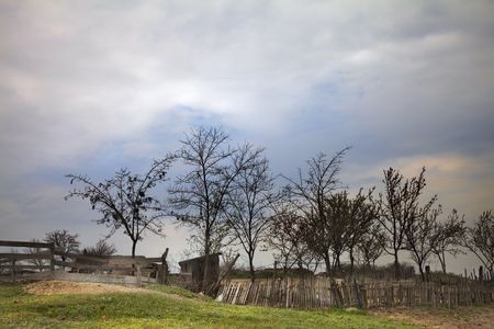 ramshackle: trees and old fence at the country in sunset Stock Photo