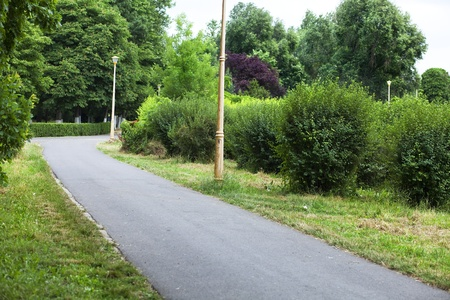 empty path in a park full of vegetation Stock Photo
