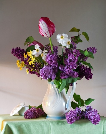 still life with tulips and lilac Stock Photo - 8602548